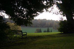 Bench - IMG_2330