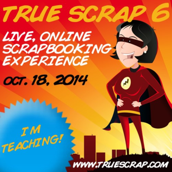True Scrap 6 Im Teaching