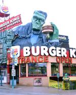 Frankenstein_bk_2