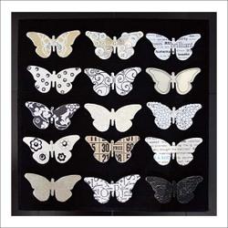 Butterfly_exhibit_2